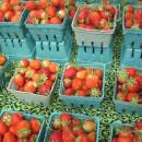 kingston-farmers-market-strawberries-130x130